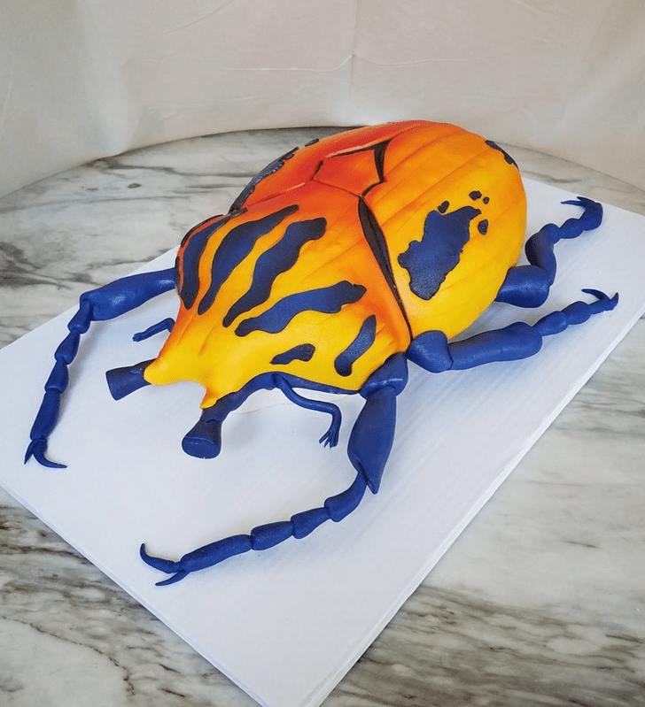 Alluring Beetle Cake