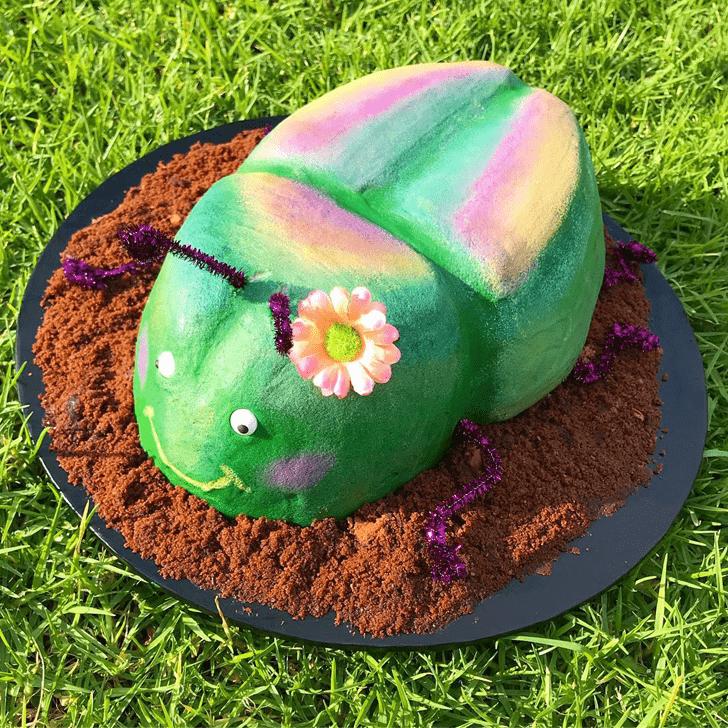 Beauteous Beetle Cake