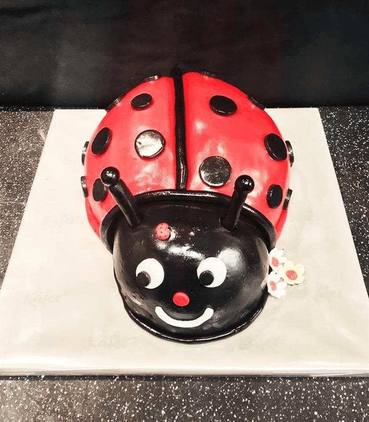 Bewitching Beetle Cake