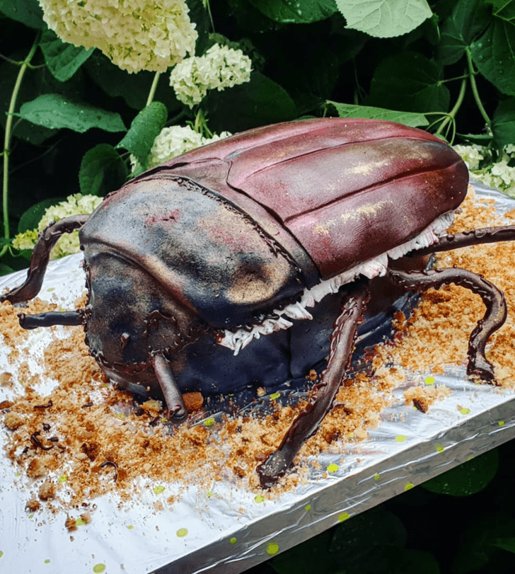 Comely Beetle Cake