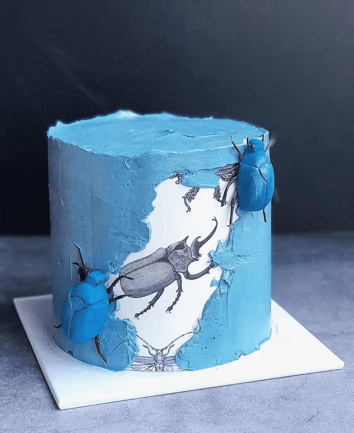 Cute Beetle Cake