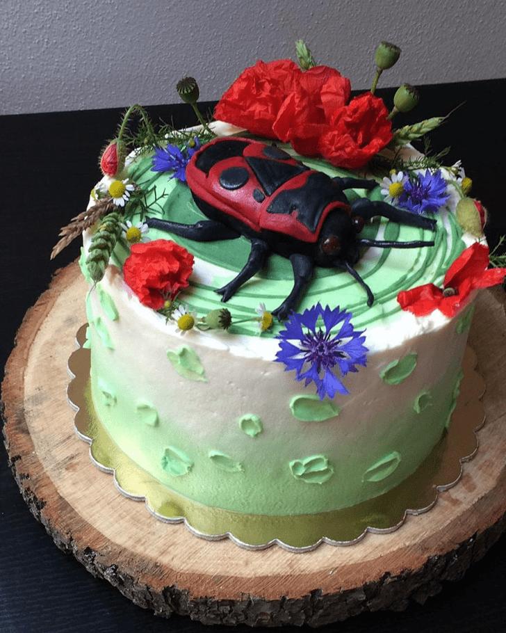 Delicate Beetle Cake