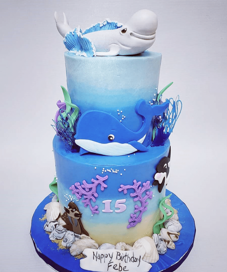 Admirable Beluga Cake Design