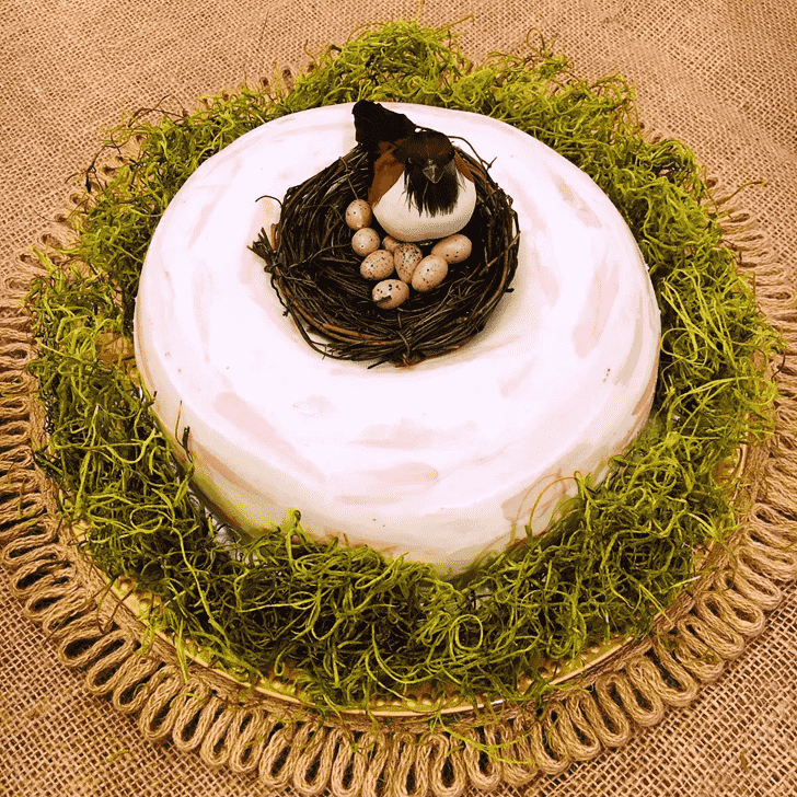 Adorable Bird Nest Cake