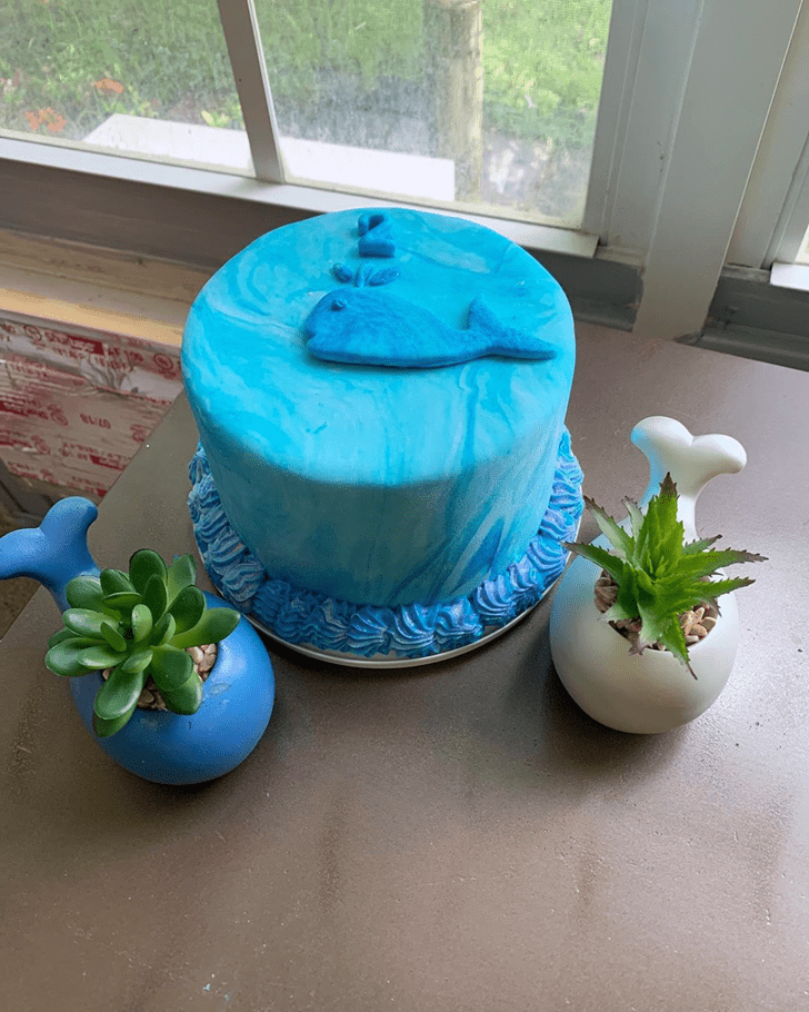 Ideal Blue Whale Cake