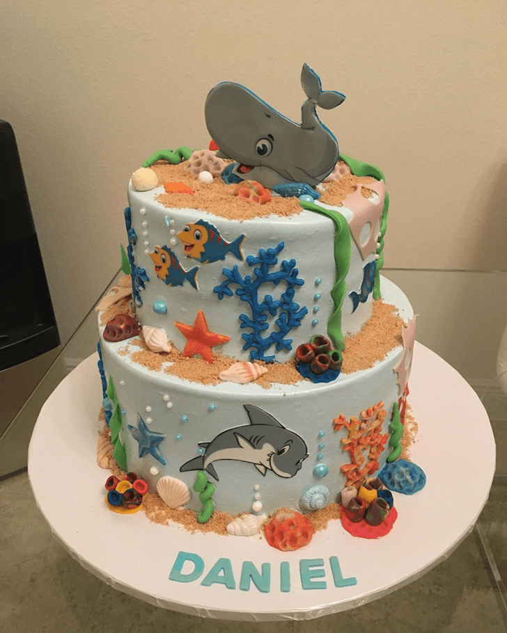 Magnetic Blue Whale Cake
