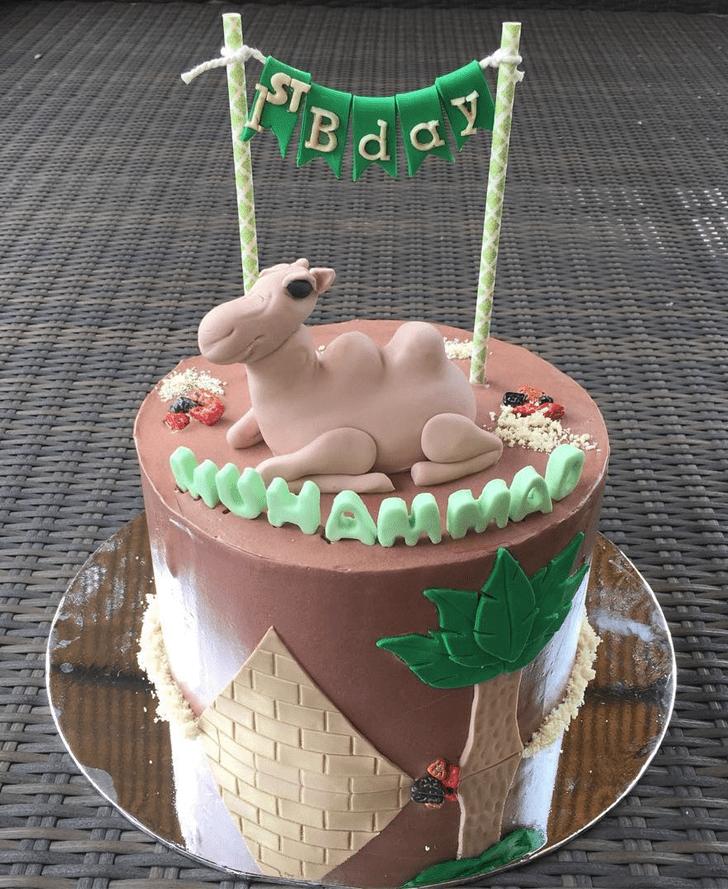 Fetching Camel Cake