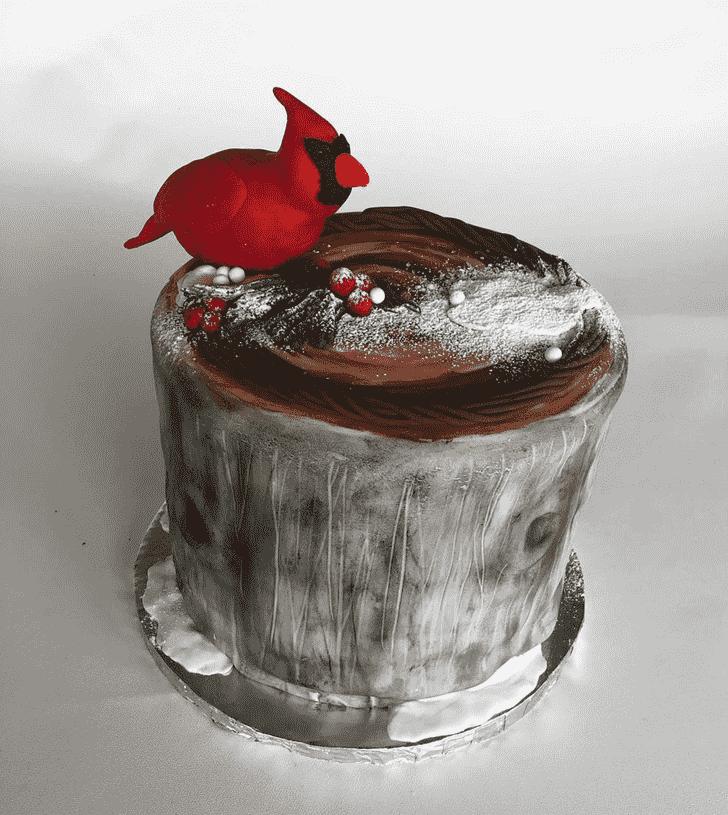 Adorable Cardinal Cake