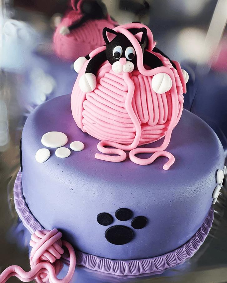 Magnetic Cat Cake