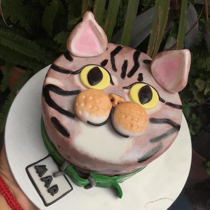 Refined Cat Cake