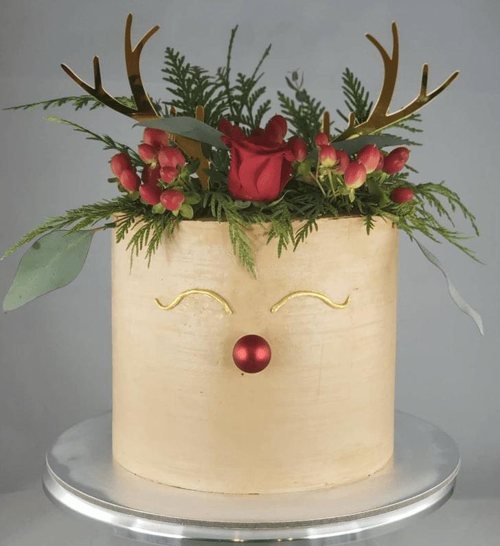 Admirable Christmas Cake Design