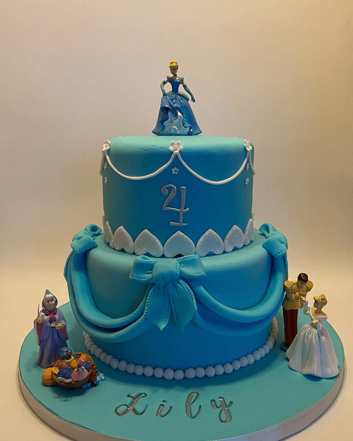 Magnetic Cinderella Cake