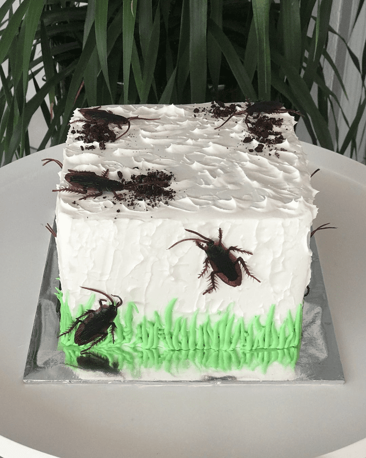Angelic Cockroach Cake
