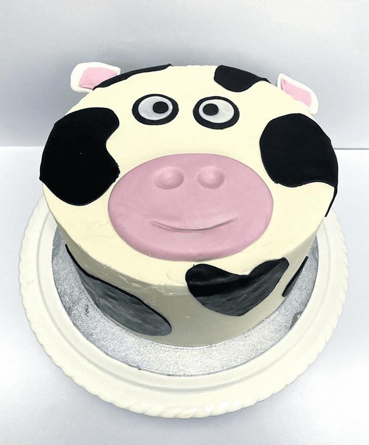 Beauteous Cow Cake