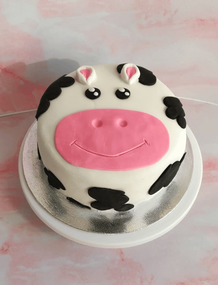 Bewitching Cow Cake