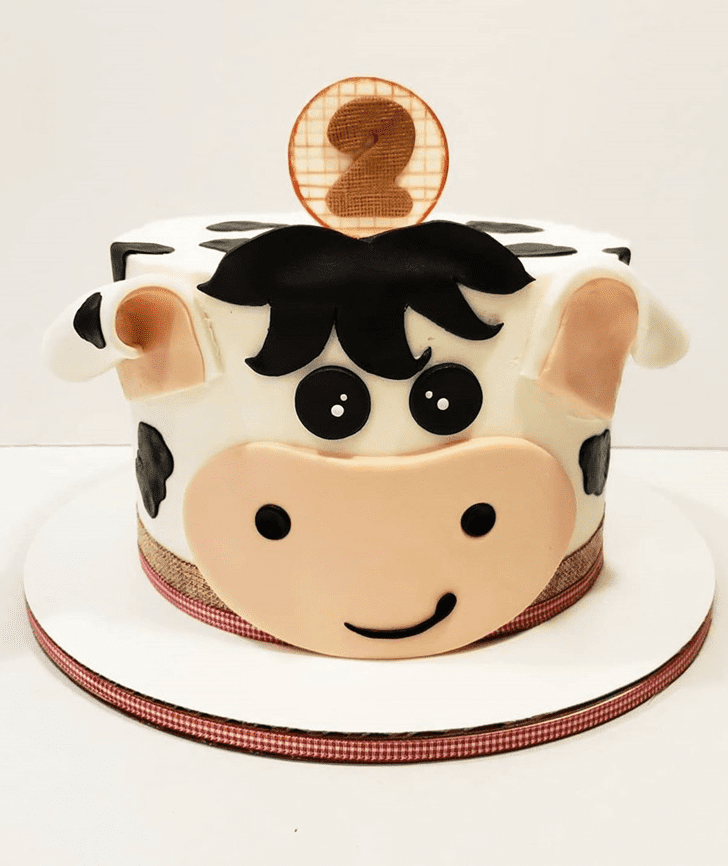 Comely Cow Cake