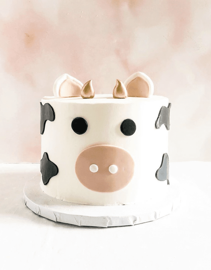 Magnetic Cow Cake