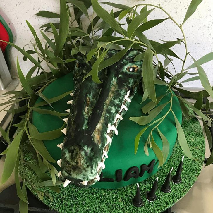 Enthralling Crocodile Cake