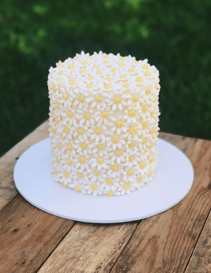 Admirable Daisy Cake Design