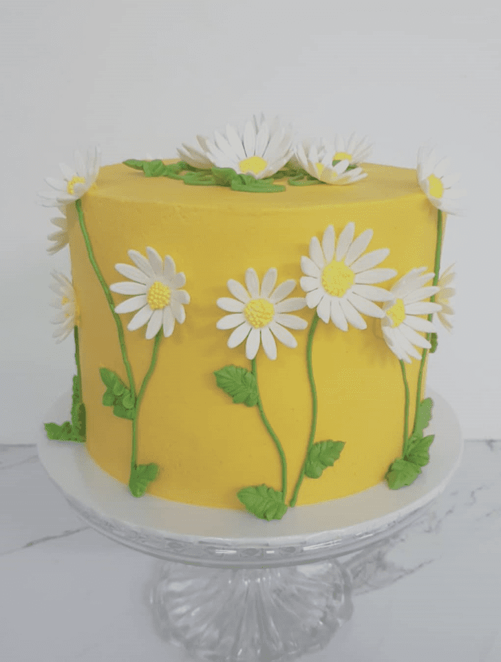 Comely Daisy Cake