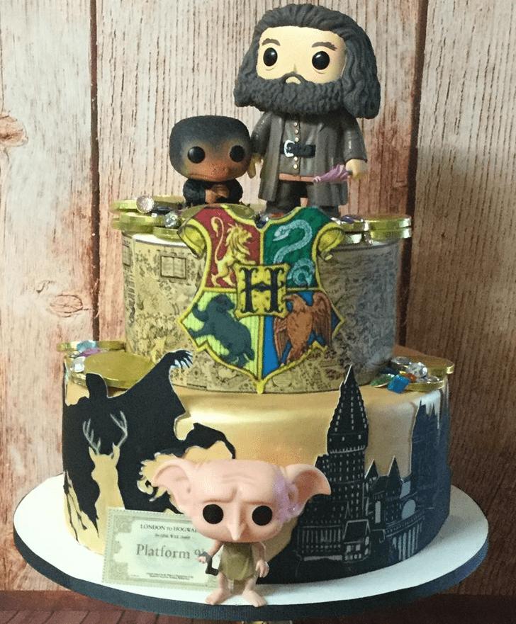 Bewitching Dobby Cake