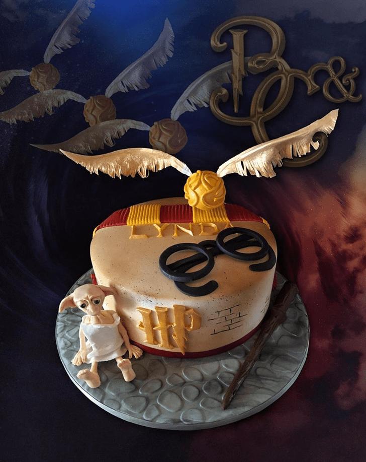 Captivating Dobby Cake