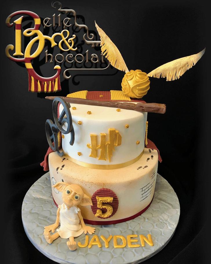 Charming Dobby Cake