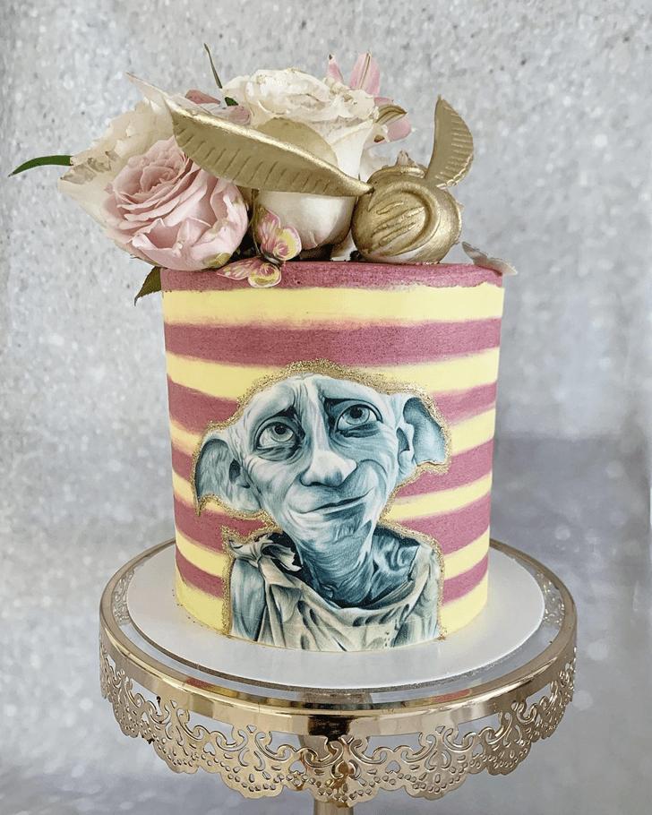 Magnetic Dobby Cake