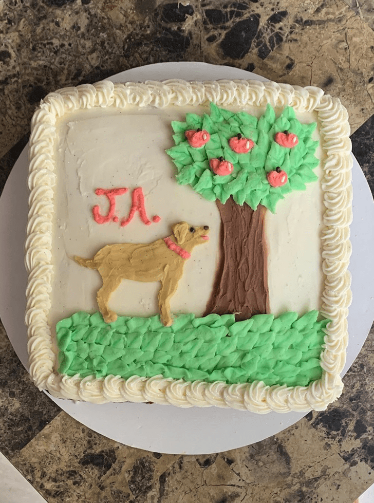 Comely Dog Cake
