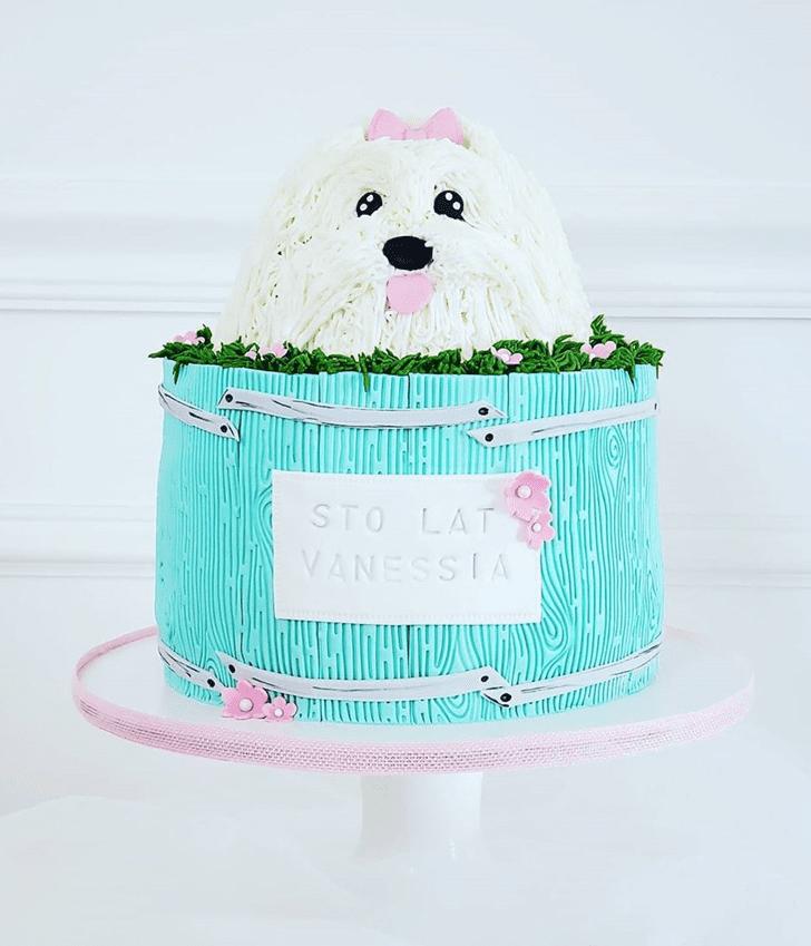 Dazzling Dog Cake