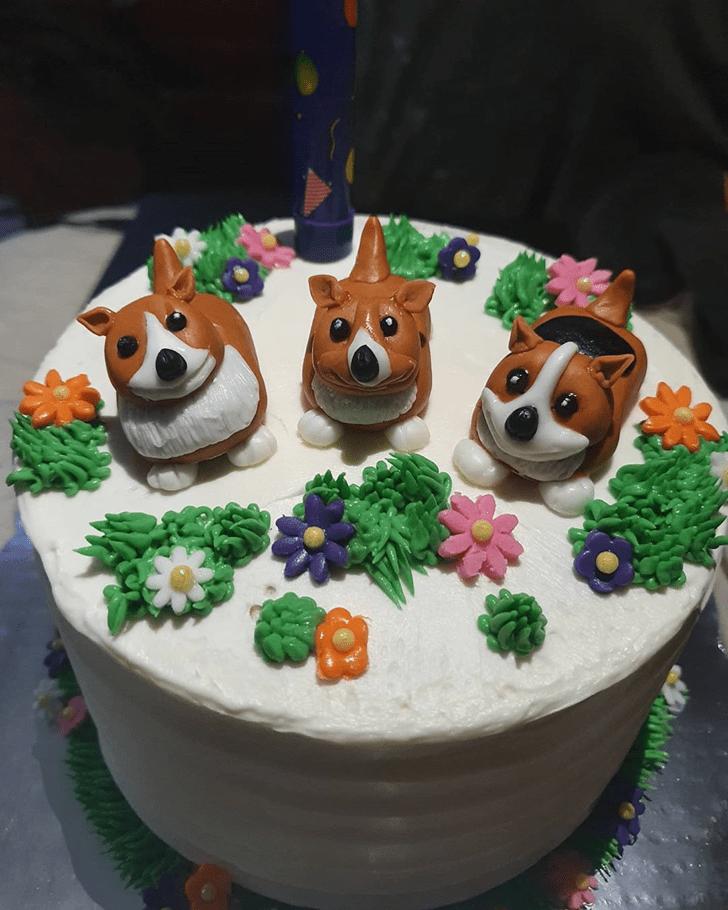 Divine Dog Cake
