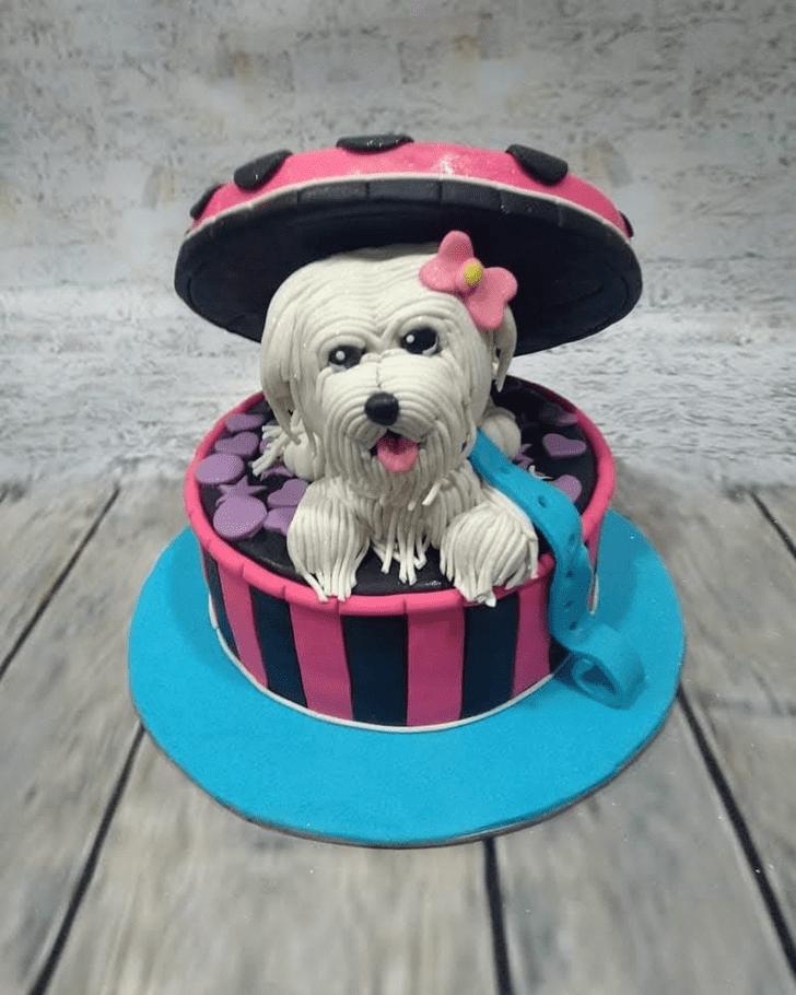 Fair Dog Cake
