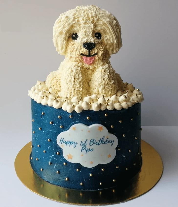 Grand Dog Cake