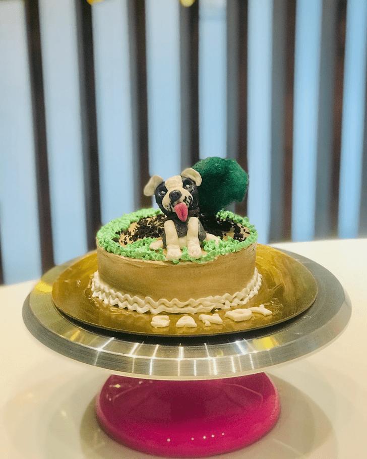 Magnificent Dog Cake