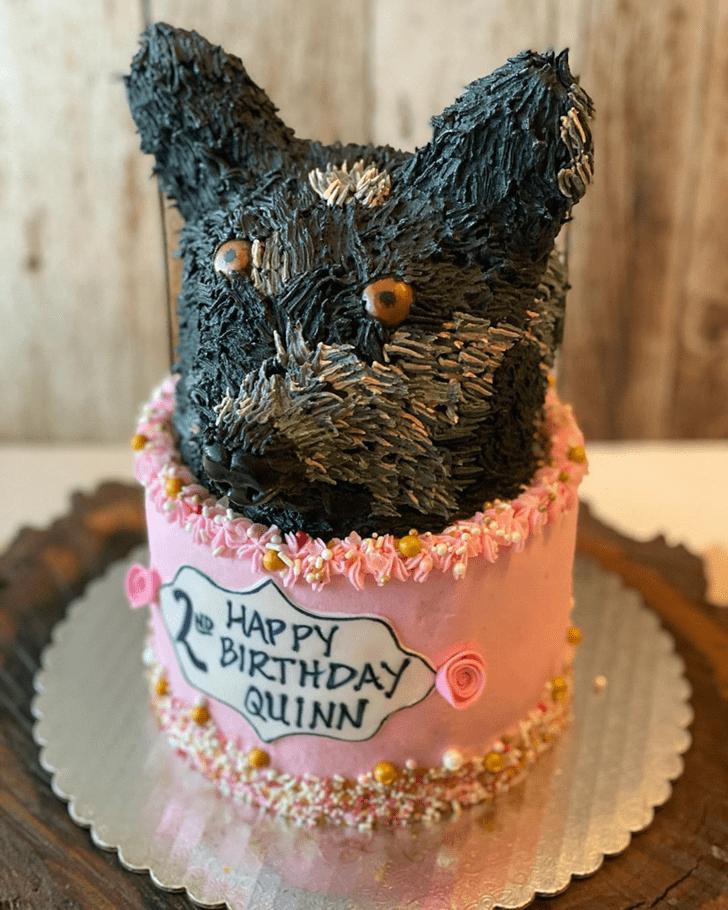 Nice Dog Cake