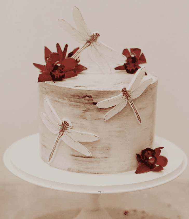 Bewitching Dragonfly Cake