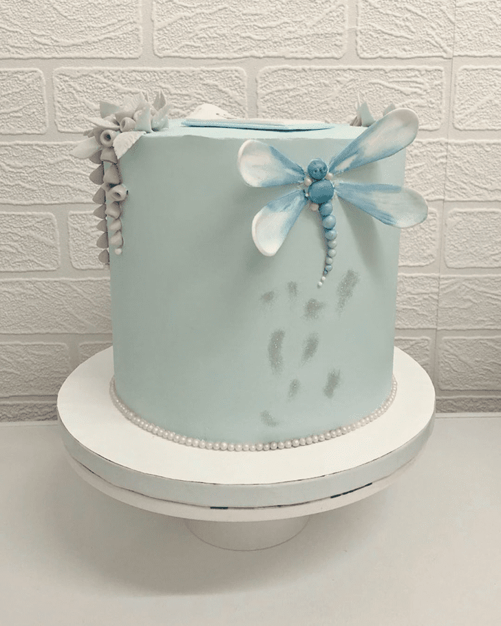 Dazzling Dragonfly Cake