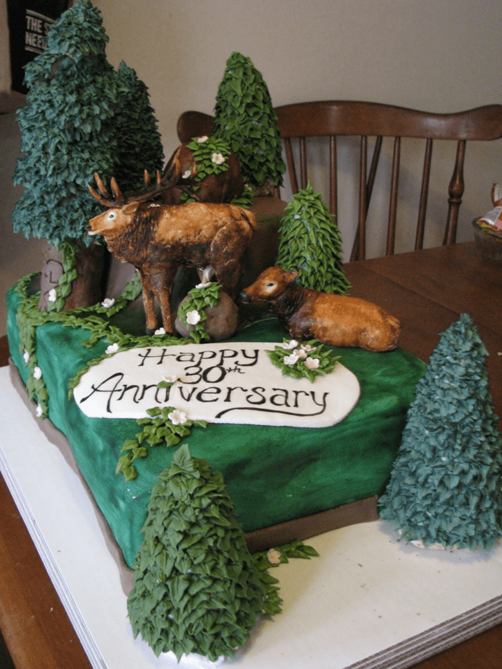 Fair Elk Cake