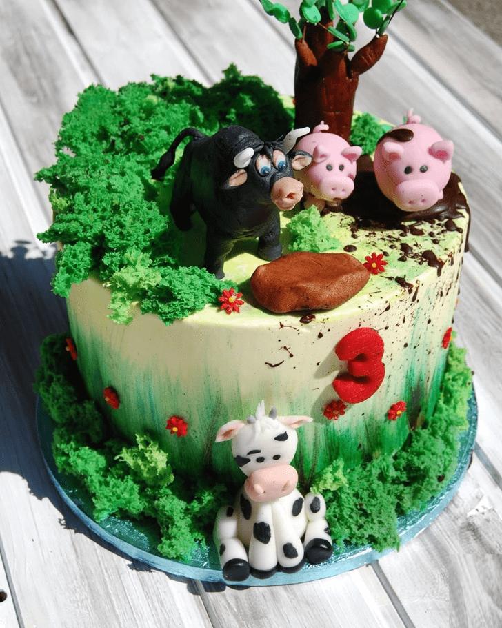 Magnetic Ferdinand Cake