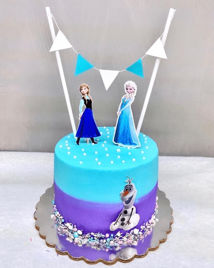 Magnetic Disneys Frozen Cake