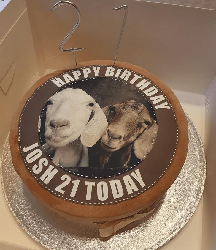 Magnetic Goat Cake