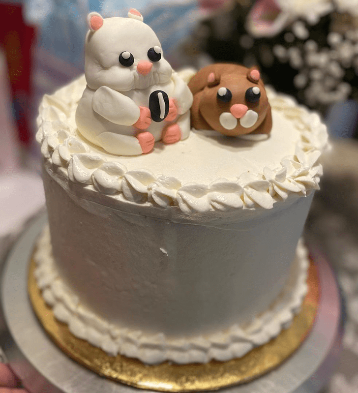 Comely Hamster Cake