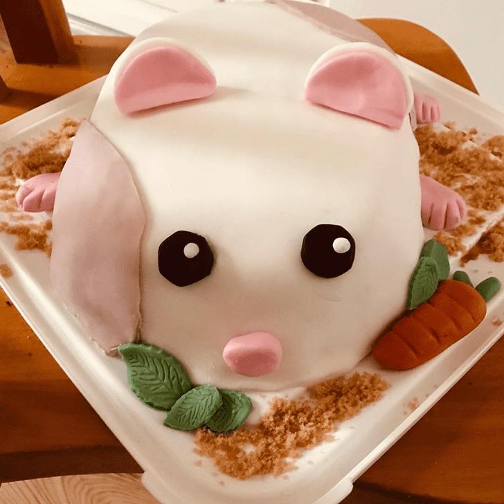 Dazzling Hamster Cake