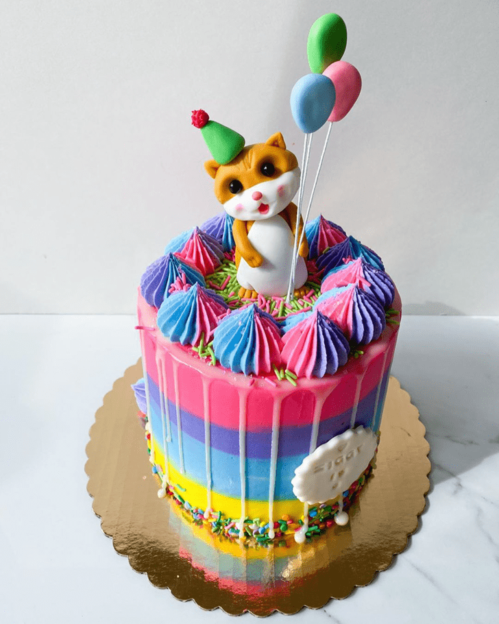 Good Looking Hamster Cake
