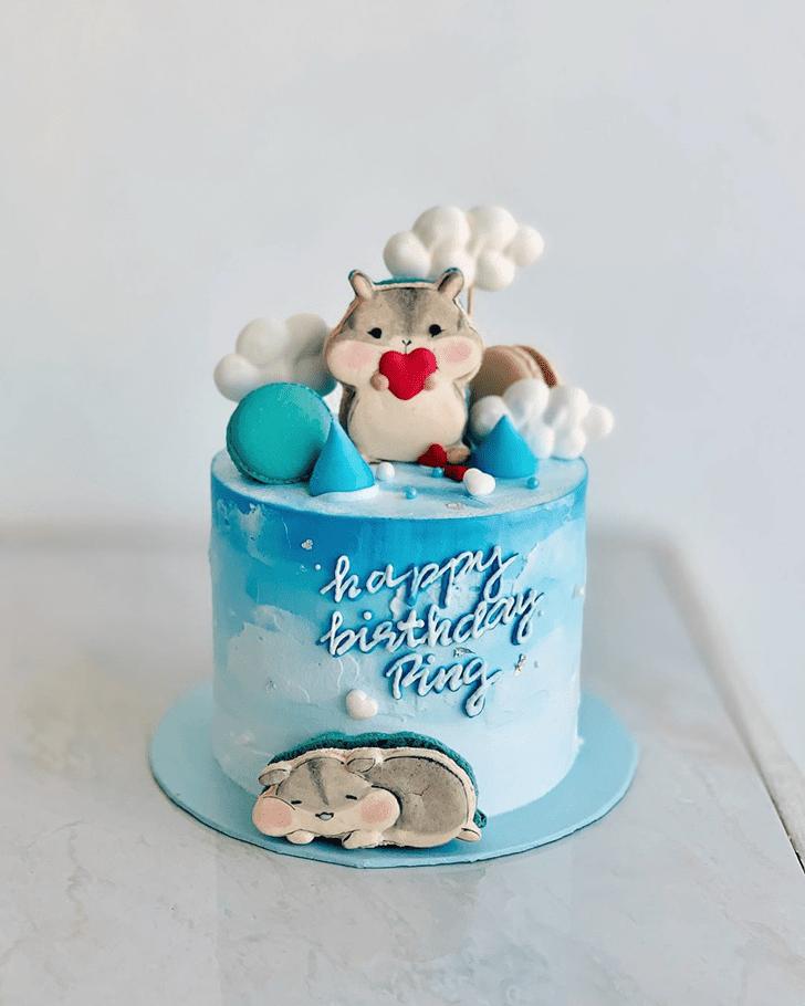 Magnetic Hamster Cake