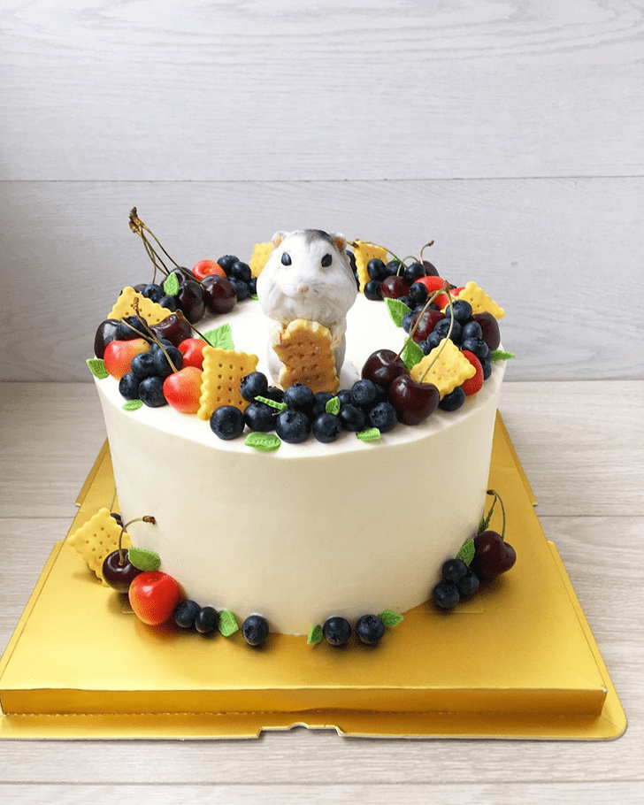 Pleasing Hamster Cake