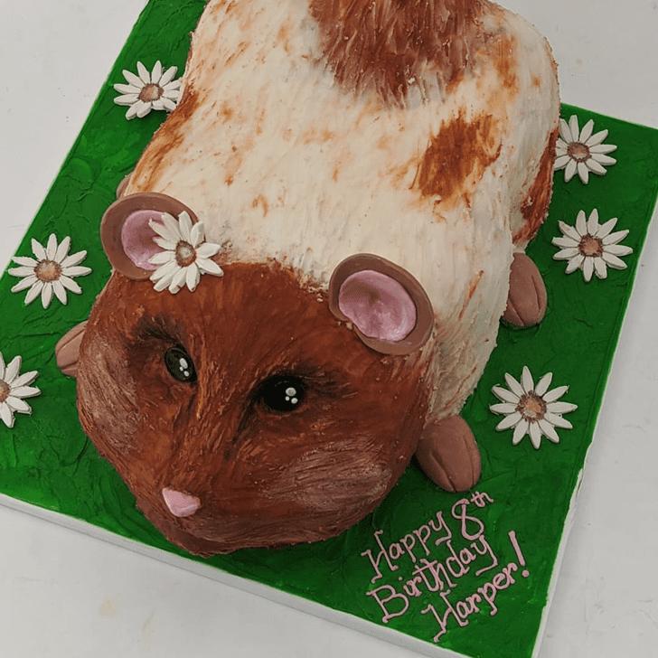 Refined Hamster Cake