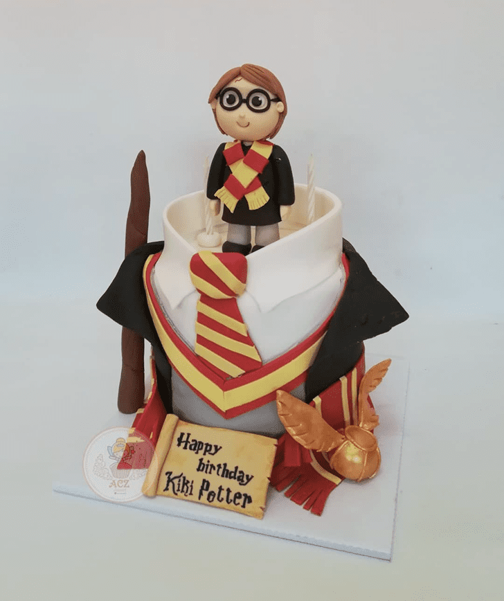 Adorable Harry Potter Cake