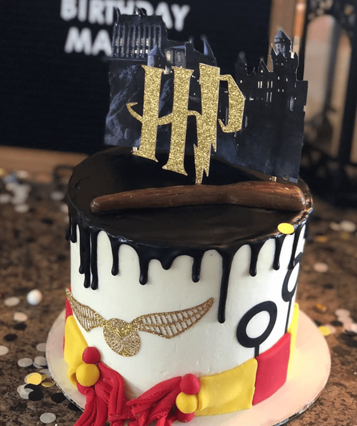 Charming Harry Potter Cake