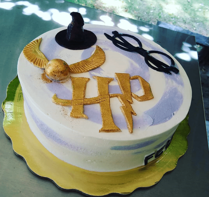 Comely Harry Potter Cake